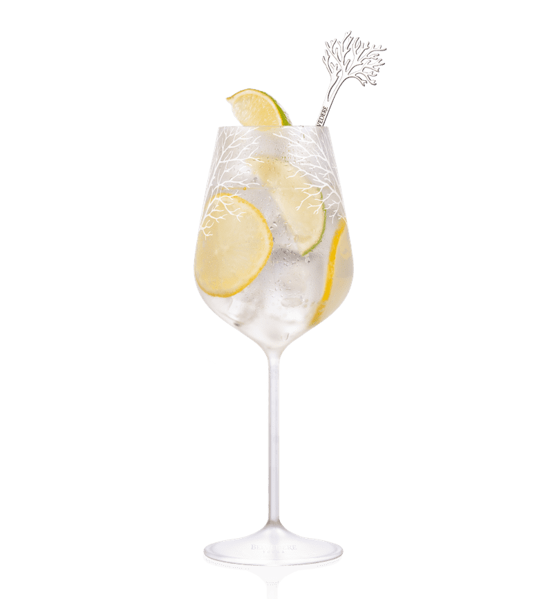 BELVEDERE CITRUS SPRITZ cocktail